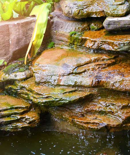 White Leaf Landscaping Commercial Water Features