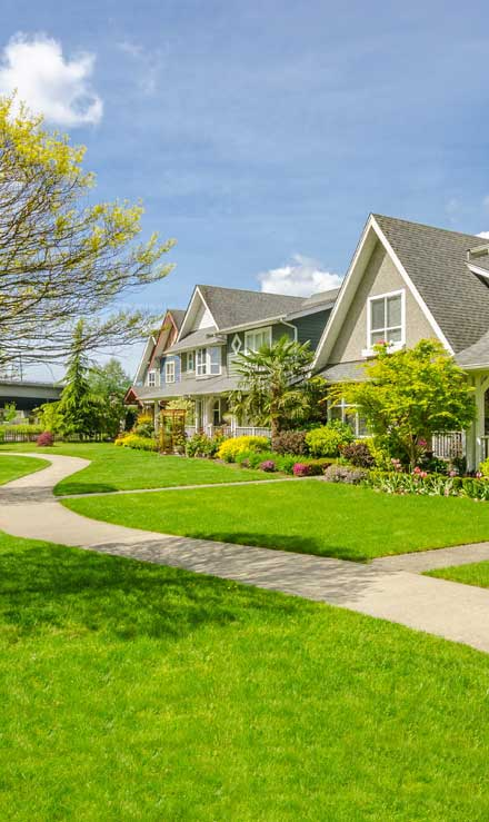 White Leaf Landscaping Residential Lawn Care