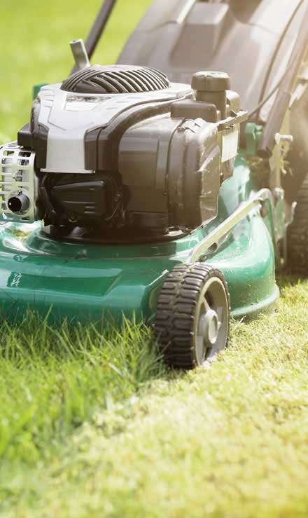 White Leaf Landscaping Residential Lawn Mowing